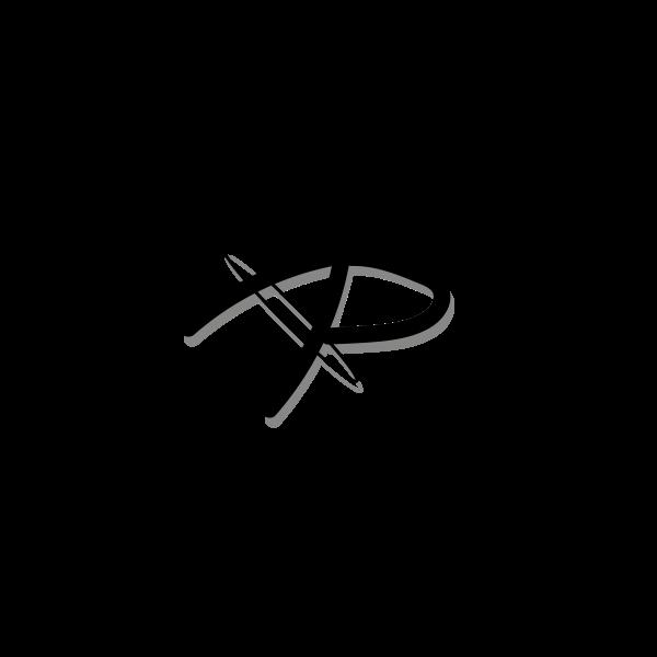 AP LOGO TYPO KREIS 2_PNG-01